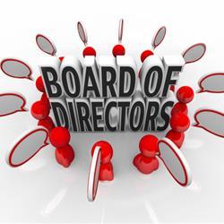 Directors liability for litigation costs